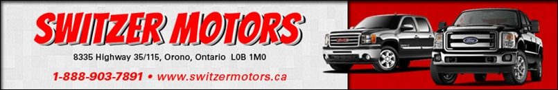SWITZER MOTORS LTD