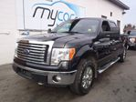2011 Ford F-150 XLT in Richmond, Ontario