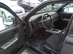 2008 Ford Escape XLT in Mississauga, Ontario image 11