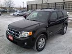 2008 Ford Escape XLT in Mississauga, Ontario image 2