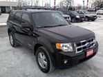 2008 Ford Escape XLT in Mississauga, Ontario image 6