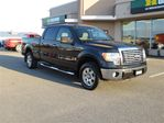 2010 Ford F-150 XTR 4WD in Rimouski, Quebec