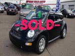 2003 Volkswagen New Beetle GLS Convertible Beetle in Calgary, Alberta