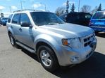 2010 Ford Escape XLT in Edmonton, Alberta
