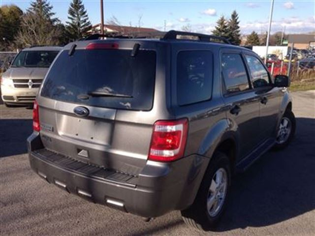 2011 ford escape xlt awd milton ontario used car for. Black Bedroom Furniture Sets. Home Design Ideas