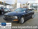 2006 Ford Mustang V6 Convertible w/super low kms   in New Westminster, British Columbia