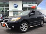 2009 Hyundai Santa Fe