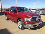 2010 Dodge RAM 1500           in St Paul, Alberta