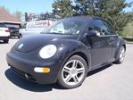 2004 Volkswagen New Beetle Convertible