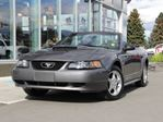 2003 Ford Mustang Convertible for SUMMER in Kamloops, British Columbia