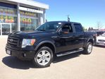 2010 Ford F-150 FX4+LEATHER+SUNROOF in Orangeville, Ontario
