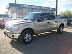 2012 Ford F-150 XLT 4x4 / Crew Cab / Low Kms / Balance of Factory in Edmonton, Alberta