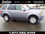 2008 Ford Escape LIMITED in Windsor, Nova Scotia