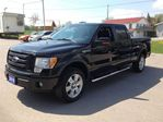 2010 Ford F-150 Lariat in Bobcaygeon, Ontario