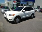 2010 Hyundai Santa Fe 
