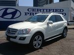 2010 Mercedes-Benz M-Class ML350 in Thornhill, Ontario