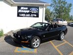 2009 Ford Mustang Gt, Leather, 45th Anniversary Edition, 5 Speed in Essex, Ontario