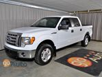 2011 Ford F-150           in Edmonton, Alberta