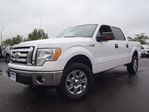 2009 Ford F-150 XLT--SUPERCREW--4X4 in Belleville, Ontario