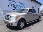 2010 Ford F-150 XLT in Richmond, Ontario
