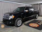 2011 Ford F-150 Platinum 4x4 SuperCrew, 3.5L EcoBoost, Leather, Moonroof in Edmonton, Alberta