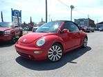 2004 Volkswagen New Beetle GLS in Delson, Quebec