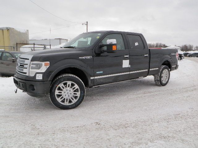 2014 ford f 150 platinum price with autos weblog. Black Bedroom Furniture Sets. Home Design Ideas