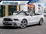 2014 Ford Mustang GT w/HEATED LEATHER, SECURITY PKG, AND 19 WHEELS in Milton, Ontario