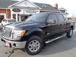 2011 Ford F-150 XLT ECO-BOOST in Paris, Ontario