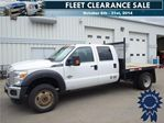 2012 Ford Super Duty F-450