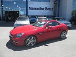 2014 Mercedes-Benz SLK-Class Roadster in Ottawa, Ontario