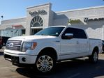 2012 Ford F-150 Platinum AWD NAV BACKUP CAM LEATHER BLUETOOTH TOW PKG TINT in Thornhill, Ontario