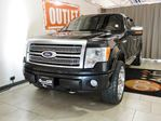 2010 Ford F-150 Platinum 4x4 SuperCrew Cab 5.5 ft. box 145 in. WB in Edmonton, Alberta