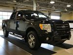 2010 Ford F-150 FX4 4WD in Saint-Leonard, Quebec