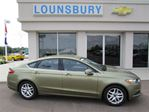 2013 Ford Fusion SE in Moncton, New Brunswick
