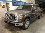 2011 Ford F-150 XLT in Manotick, Ontario