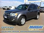 2009 Ford Escape XLT in Brandon, Manitoba