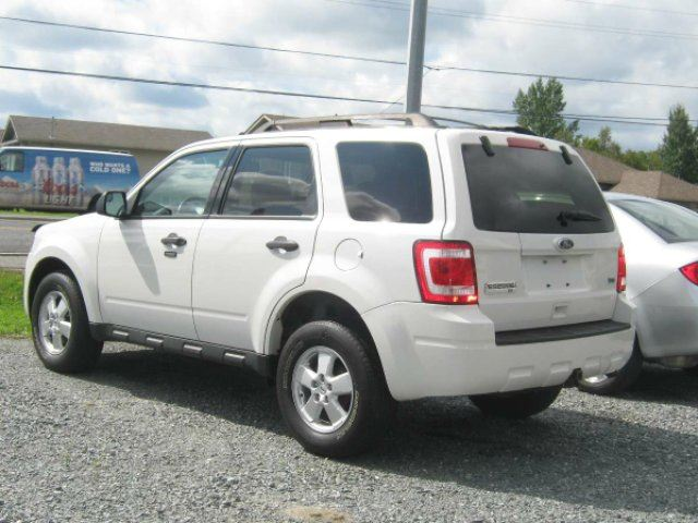 Used Cars Ford Escape