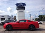 2014 Ford Mustang California Special GT in Caledonia, Ontario