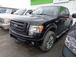 2010 Ford F-150 FX4 in Yellowknife, Northwest Territories