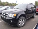 2010 Ford Escape XLT in Hawkesbury, Ontario
