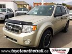 2011 Ford Escape XLT Automatic 4dr 4x4 in Edmonton, Alberta