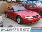 1999 Ford Mustang Base in Penticton, British Columbia