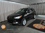 2013 Ford Escape SE in Edmonton, Alberta