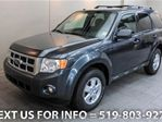 2009 Ford Escape XLT 5-SPD MANUAL! w/ ALLOYS! POWER PKG! SUV in Guelph, Ontario