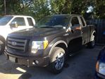 2010 Ford F-150 FX4 in Caledonia, Ontario