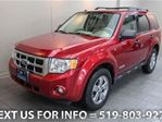 2008 Ford Escape 4WD XLT w/ ALLOYS! POWER PKG! 4x4 SUV in Guelph, Ontario
