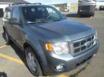 2010 Ford Escape XLT in St John's, Newfoundland And Labrador