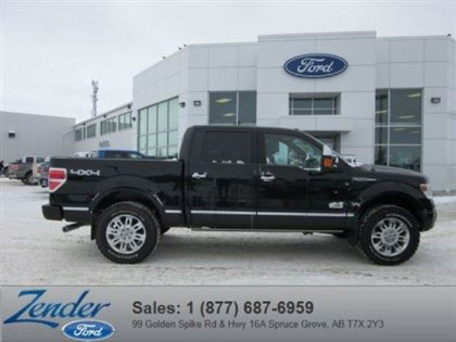 2014 ford f 150 platinum spruce grove alberta used car for sale 2053448. Black Bedroom Furniture Sets. Home Design Ideas