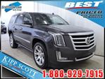 2015 Cadillac Escalade Premium in Red Deer, Alberta